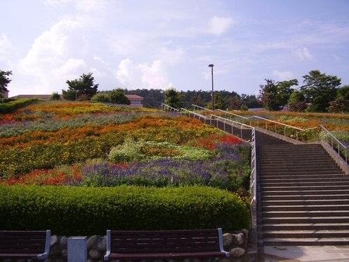 フルーツ公園の花園